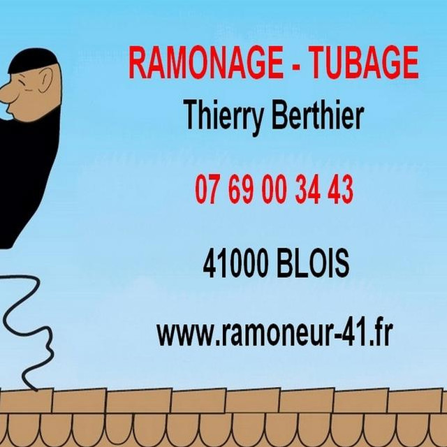 Ramonage Thierry Berthier
